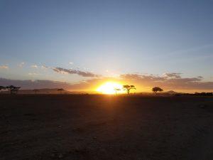 serengeti sun set