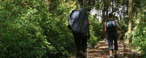 mt kilimanjaro climbing expedition in tanzania, africa