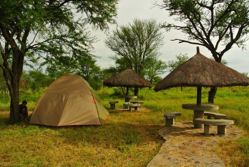 seronera campsite